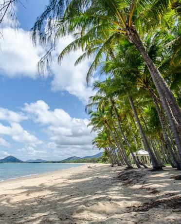 There is such a thing as budget accommodation in Palm Cove, Queensland! The Cairns Beach Flashpackers (backpackers/hostel) is walking distance (just 100m) from this Palm Cove beach. It has Deluxe Private Ensuite Rooms as well as dorm rooms for a fraction of the price of a hotel! Click the link to check it out or book!