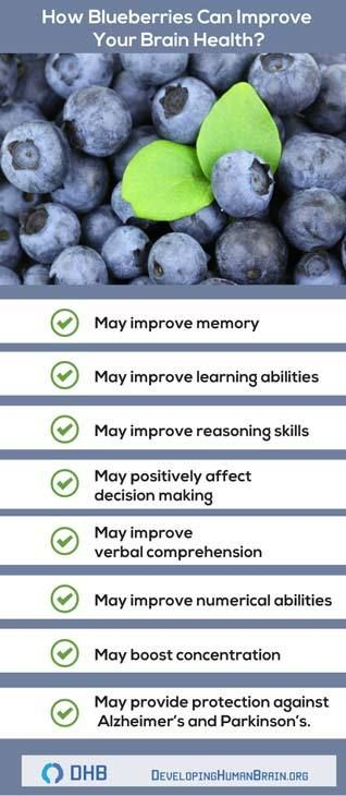 Brain Boosting is also on the list of the benefits blueberries have to offer