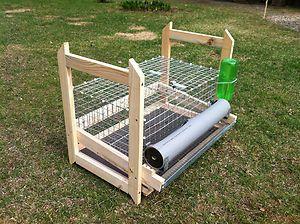 QUAIL CAGE / quail hutch / quail coop that allows eggs to slide into a trough