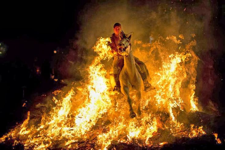 """Un uomo cavalca un cavallo attraverso un falò durante le celebrazioni nel giorno di Sant'Antonio, il santo patrono degli animali, a San Bartolome de Pinares, 100 km da Madrid, in Spagna. Centinaia di persone si sono riunite nella cittadina spagnola durante le """"Luminarias"""", una festa tradizionale vecchia 500 anni istituita per purificare gli animali e proteggerli per il futuro. (Ap)"""