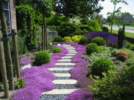 Leuke speelse tuin. Mooi accent gelegd op het looppad dmv de paarse bloemen.