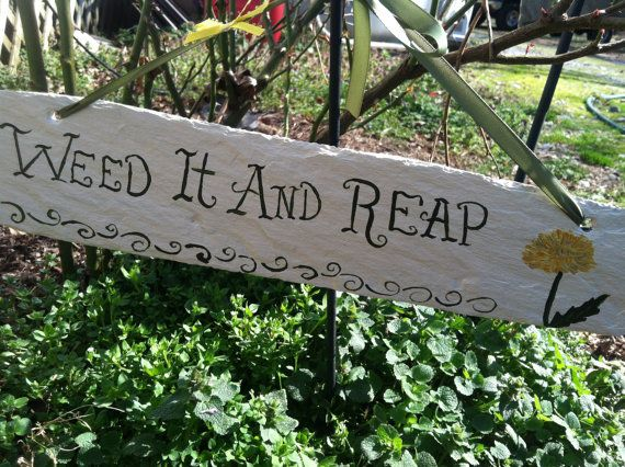 Funny Garden Signs, Garden Decor, Yard Signs, Yard decor, Weed it and Reap Sign on Etsy, $14.00