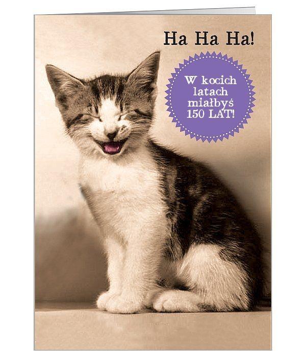 kartka urodzinowa, że kot by się uśmiał :)