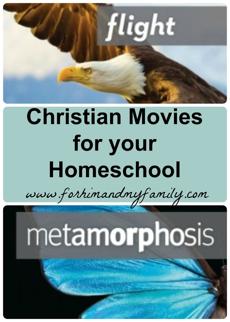 Christian movies homeschool review