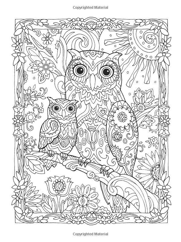 Amazon.com: Creative Haven Owls Coloring Book (Creative Haven Coloring Books) (9780486796642): Marjorie Sarnat: Books