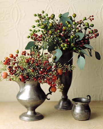 Rose Hips. Seasonal Garden Treasures: Rose Hips The Gardenist | Apartment Therapy