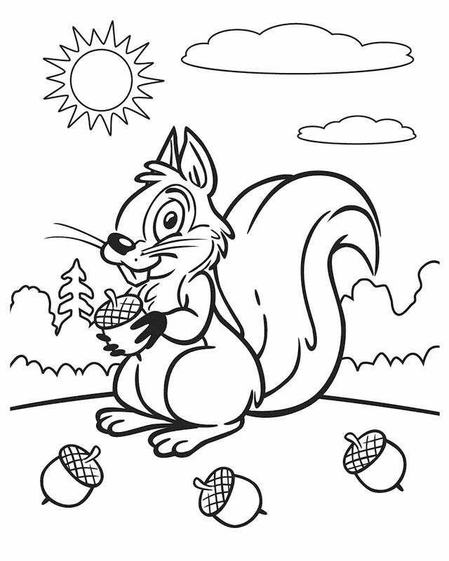 Squirrel on a sunny day - Free Printable Coloring Pages