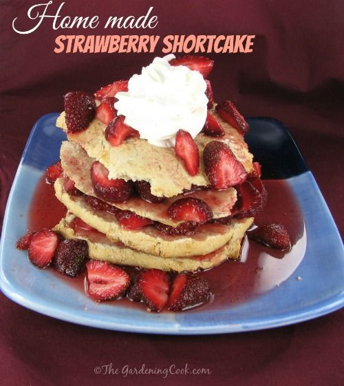 "This Four layer fresh strawberry shortcake with whip cream is my mother's recipe and lovingly called ""grammie's shortcake"".  Perfect when fresh strawberries are in season. Get the recipe:  http://thegardeningcook.com/strawberry-shortcake/"