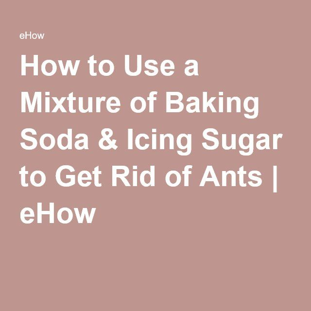 1000 Ideas About Killing Sugar Ants On Pinterest Killing Ants Sugar Ants And Borax For Ants