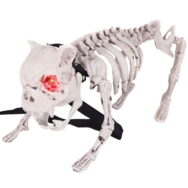 vicious barking skeleton dog menacing fierce halloween decoration prop dogs products and barking