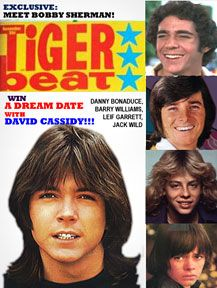 Tiger beat magazine. I tore out the photos and taped them on my bedroom walls.