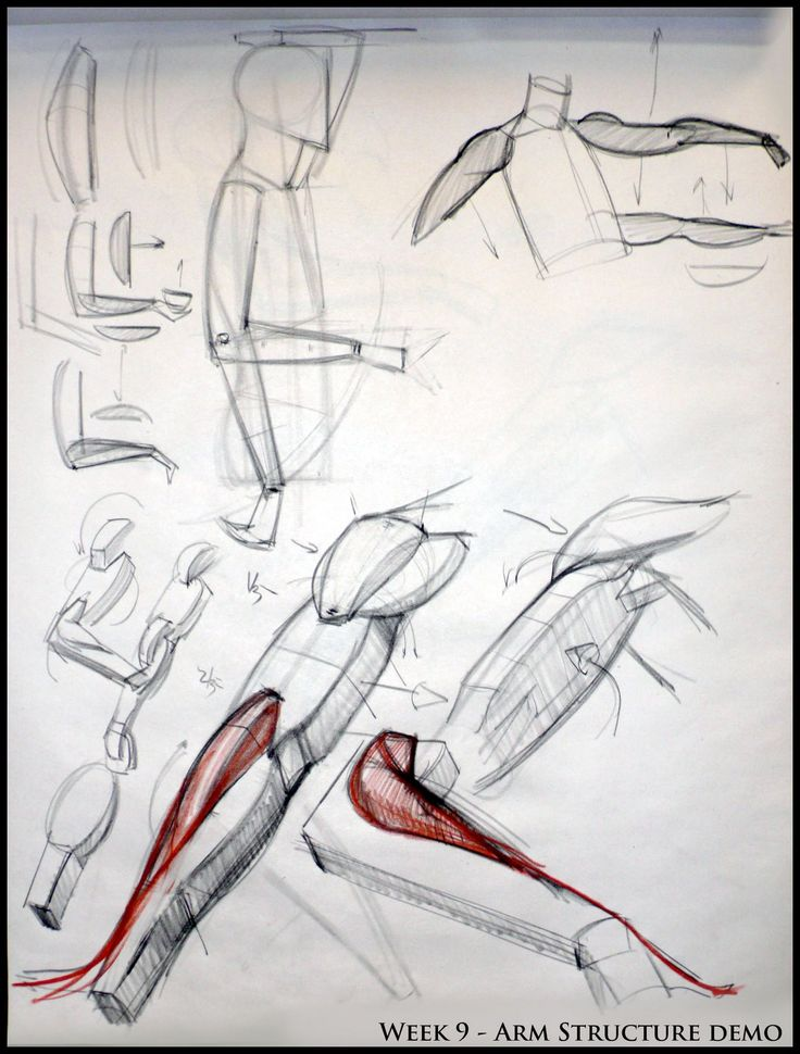 ✤ || CHARACTER DESIGN REFERENCES | Find more at https://www.facebook.com/CharacterDesignReferences if you're looking for: #line #art #character #design #model #sheet #illustration #expressions #best #concept #animation #drawing #archive #library #reference #anatomy #traditional #draw #development #artist #pose #settei #gestures #how #to #tutorial #conceptart #modelsheet #cartoon