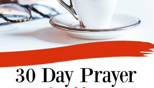 30 Day Prayer Challenge {Renewing the Mind}