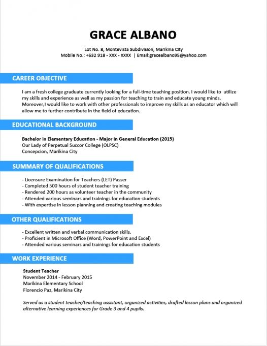 Examples Of Profile Statements For Resumes | Example Resume And
