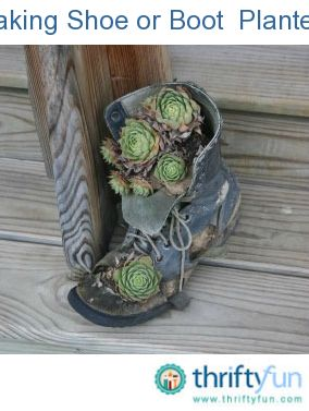 This is a guide about making shoe planters. Old shoes make interesting
