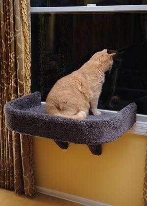 Good Hilaryu0027s DIY Window Perches With Cozy Fleece Beds | Cat Window Perch, Cat  Window And DIY Ideas