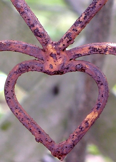 rustHouse Design, Design Room, Rusty Heart, Living Room Design, Gardens Gates, Wrought Iron, Modern House, Rusty Things, Iron Gates