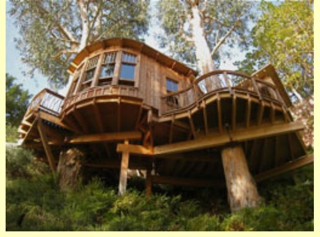 Future Tree Houses 330 best luxury tree houses images on pinterest | treehouses, tiny