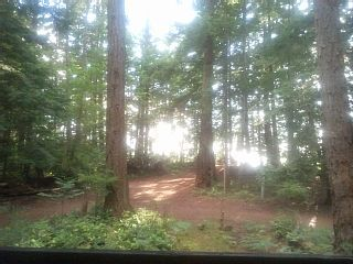 Semi-Waterfront: 2 minutes walking distance to a beautiful sandy beach!Vacation Rental in Cortes Island from @homeaway! #vacation #rental #travel #homeaway