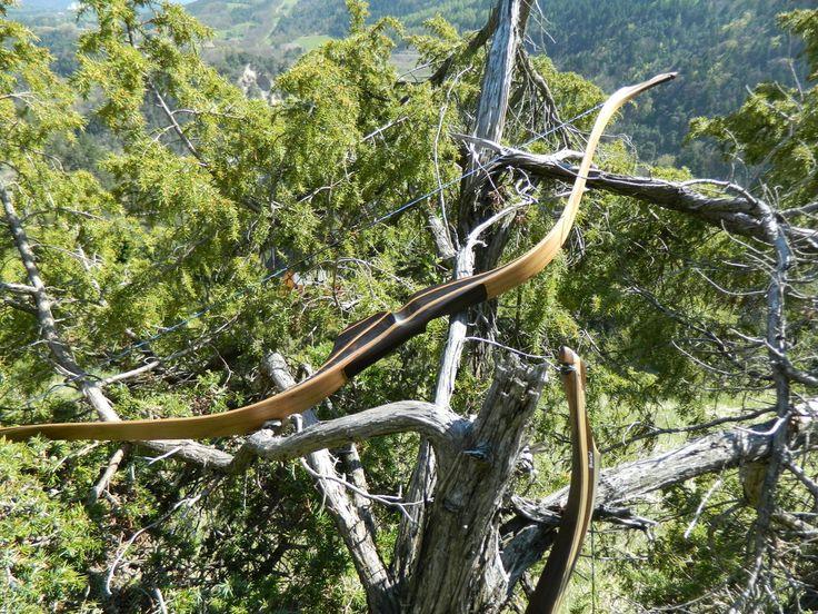 Les photos du Boréal, l'arc de chasse - Padawan Archerie  