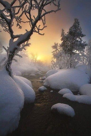 """Miks' Pics """"Nature Scenes l"""" board @ http://www.pinterest.com/msmgish/nature-scenes-l/"""