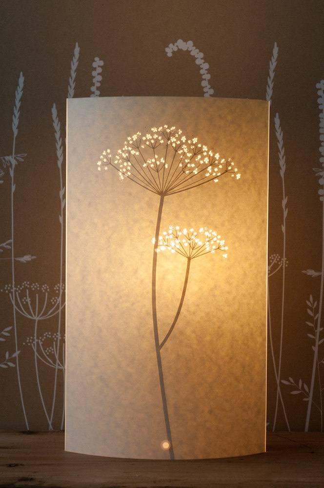 17 Best Images About ╮ Cow Parsley ╮ Queen Anne S Lace