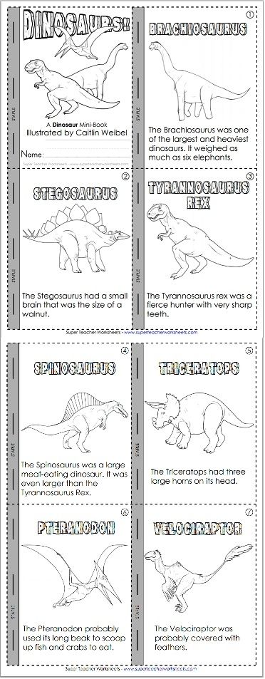 Learn about dinosaurs and practice