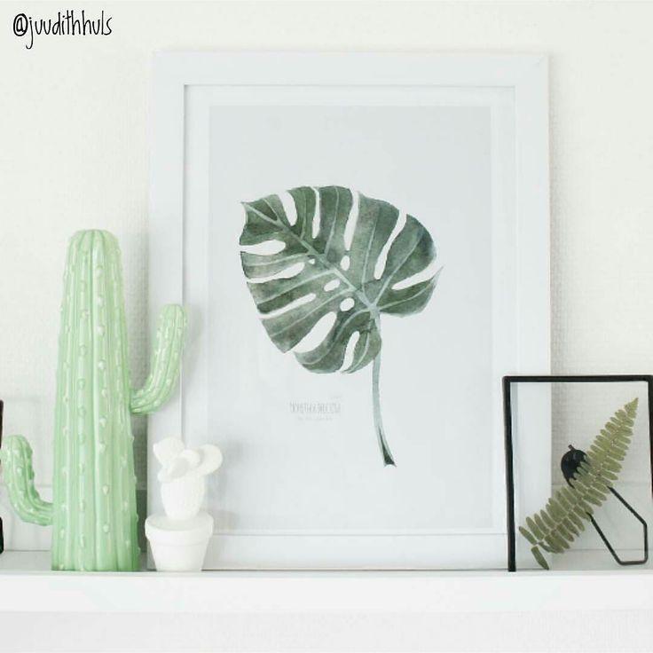 Dit is de leuke porseleinen cactus (de grote groene) waar ik het al eerder deze week over had. Het is weer een best-budget-buy; de cactus is te koop vanaf 399 bij Blokker. Bedankt dat ik je foto mocht delen @juudithhuls!