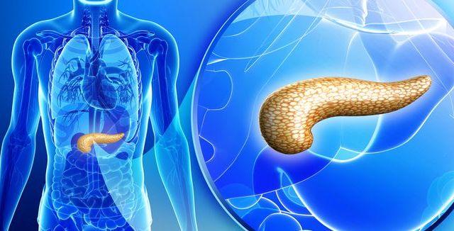 Zahlenění, nadýmání a bolesti břicha mohou signalizovat nemoc slinivky břišní. Patří mezi nejdůležitější orgány v těle, kde…
