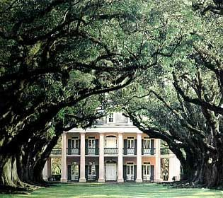 southern style plantations | trees alot of houses in the south have a plantation like type of look ...