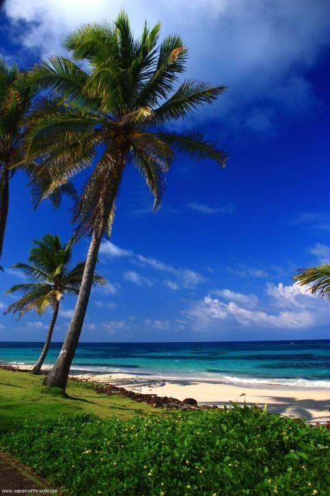 Nicaragua Travel Reviews