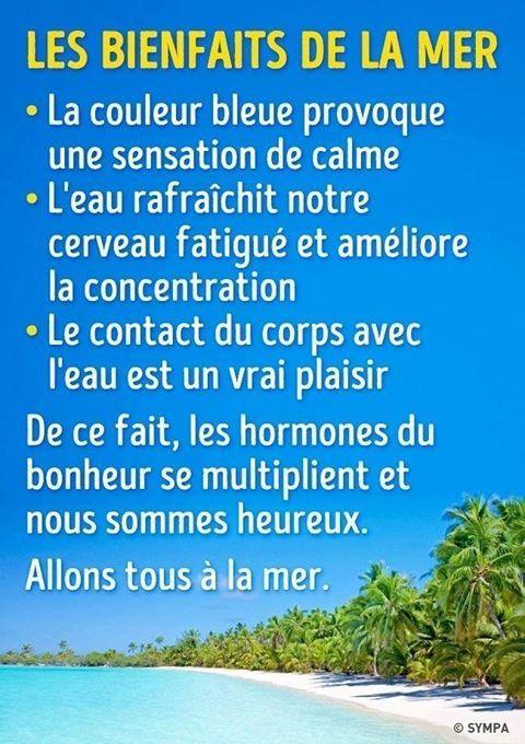 """🔥Mettez un """"👍"""" si vous aimez🔥 👉🏻Taguez un(e) 👫 que ça pourrait intéresser ! . 👉🏻Recevez mon guide nutritionnel complet santé🍓 à suivre quelque soit votre objectif ▶️ https://goo.gl/ix2hRC 🍐  #julyfithbc #boostersasante #bienetre #sante #mer #bienfaits #heureux #eau #plage #mer"""