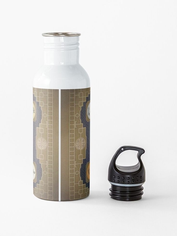 Avatar The Last Airbender Map Water Bottle By Annabalch Advertisement Advertisement Map Airbender Ava Water Bottle Bottle Avatar The Last Airbender