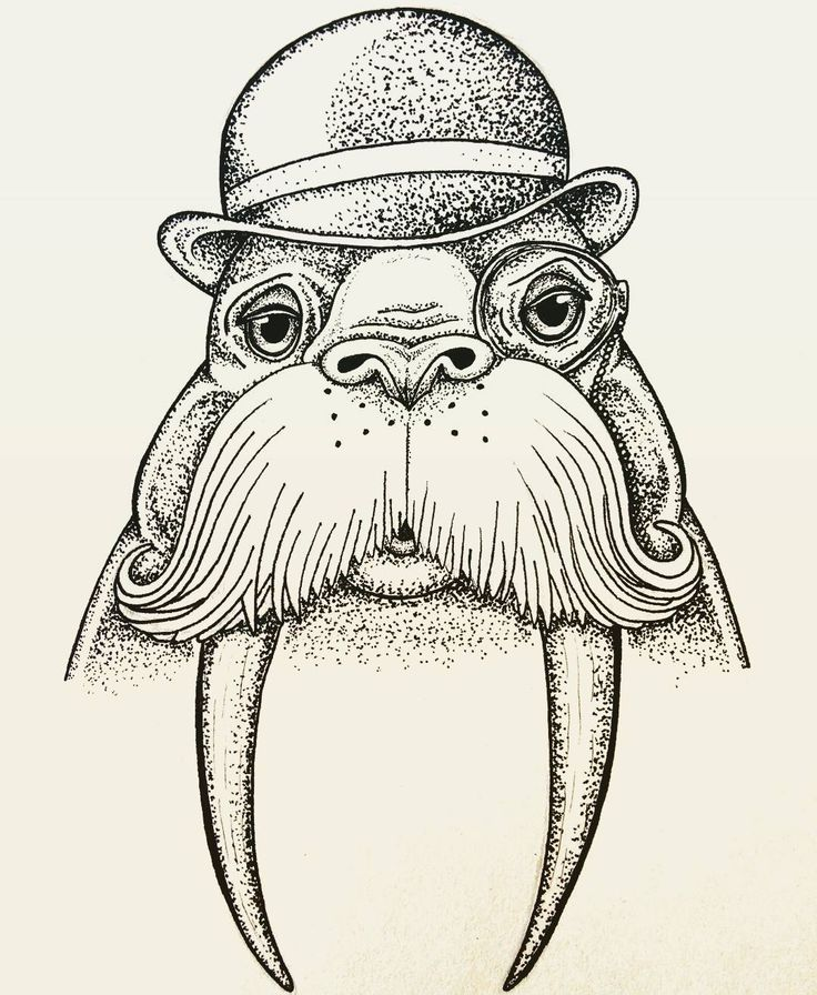 1000+ images about Walrus Illustrations & Cartoons on ...