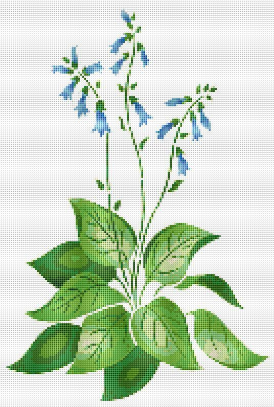 Bluebells Cross Stitch Pattern Flower Floral by xstitchpatterns