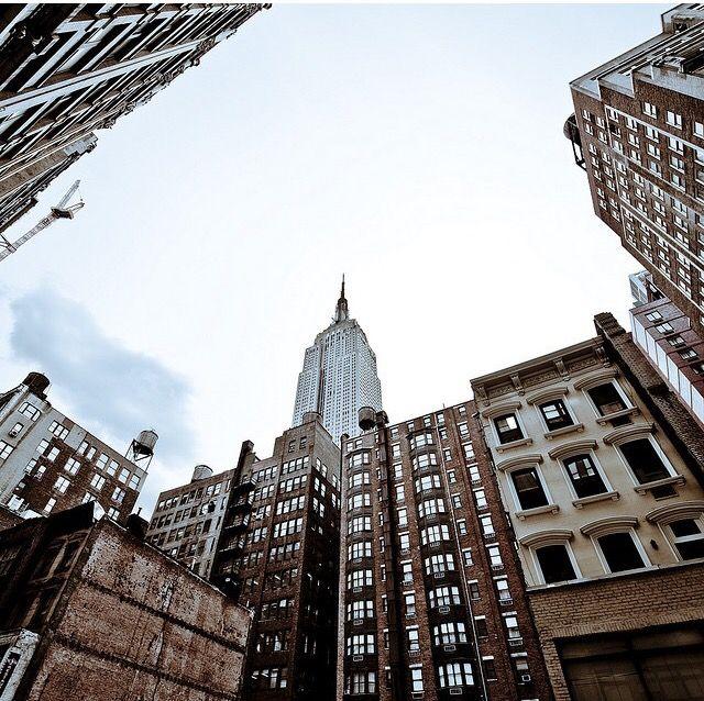Pinterest Jungle Buildings: 23 Best Empire State Building Images On Pinterest