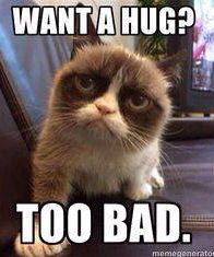 The problem is, grumpy cat never gave us a chance to say if we wanted a hug or not!!!! Lol