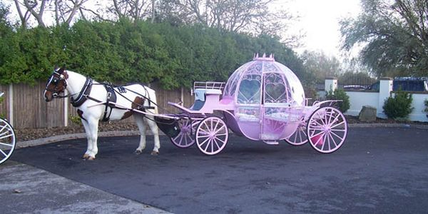 Cinderella Horse And Carriage | Horse And Carriage Hire Manchester, Liverpool, Cheshire, Leeds ...; ( Pink Light up Cinderella Coach!)