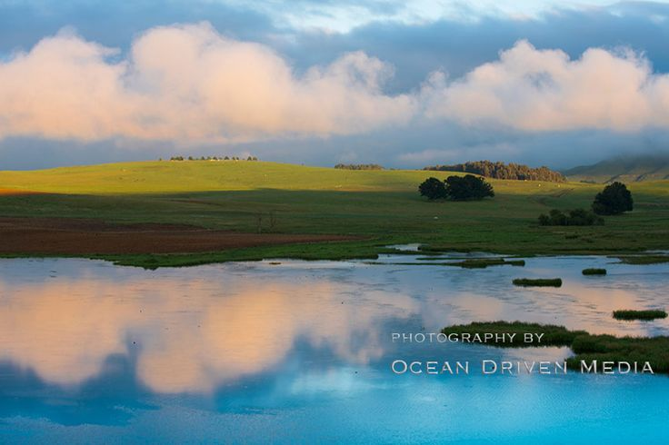 Sunrise over a lake in the Drakensberg, pink fluffy clouds