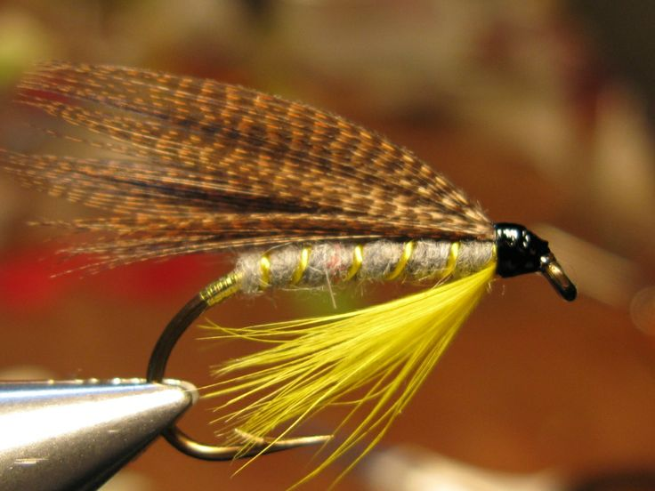 Purty yellow dun wet fly fishing flies pinterest fly for Wet fly fishing