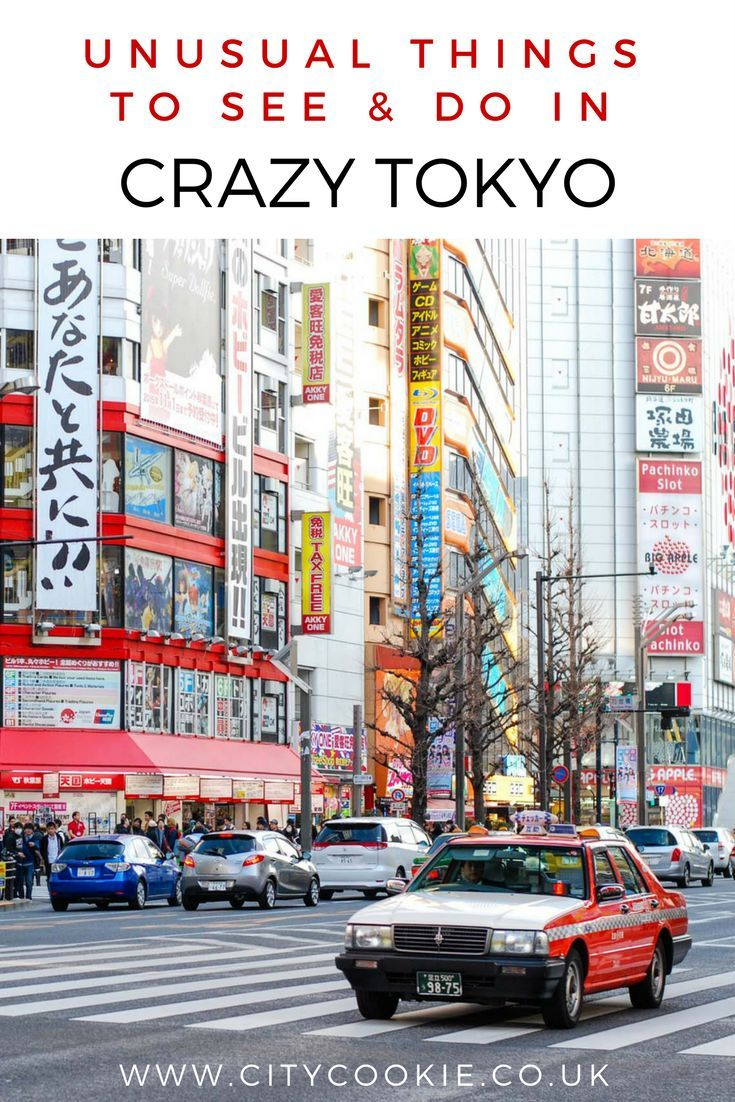 A guide to the craziest, weirdest and most unusual things you can do and see in Tokyo. Make your trip to Japan a memorable one!