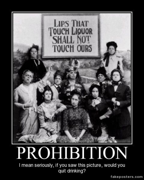 an analysis of the prohibition in the united states The role of prohibition in the history of the united states of america.