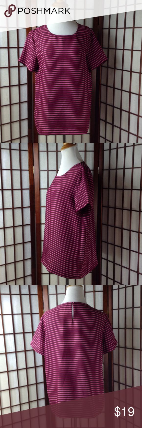 """Ann Taylor Loft Striped Short Sleeve Top pre-owned excellent condition.     Ann Taylor Loft Size Small.    striped pattern, short sleeve , keyhole back , shade of pink (brink pink) and brown (burgundy), made of 100% polyester. Pit to pit 19 inches, shoulder to hem 25.5"""" LOFT Tops"""