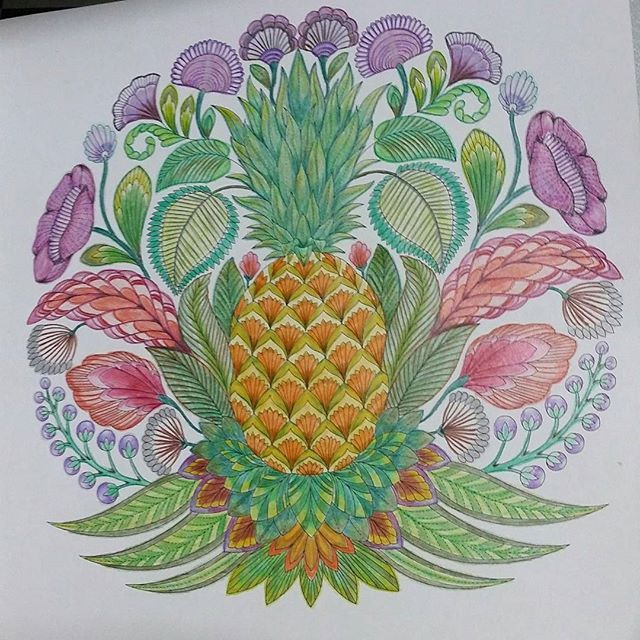Finally Finish The Pineapple Fm Tropical Wonderland Millie Marotta Took Me Nearly 2 Weeks To This Marco Colour Pencils