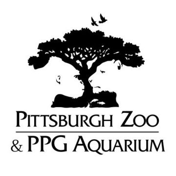 Great logo -- Tree, gorilla and lion