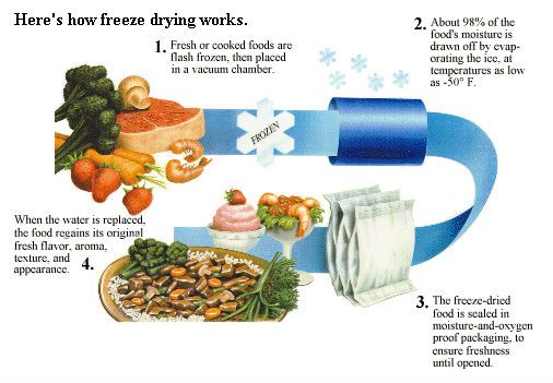 The difference between Freeze Dried and Dehydrated