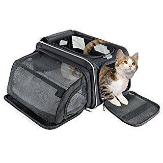 LINK: http://ift.tt/2qUoXhZ - TOP 10 DES MEILLEURS TRANSPORT POUR CHATS: JUIN 2017 #travail #transportchats #chat #chien #animaux #animalerie #pet #voyage #trolley #sacs #amazonbasics => Guide d'achat: les 10 meilleurs Transport pour Chats de juin 2017 - LINK: http://ift.tt/2qUoXhZ