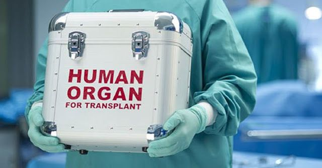 Francia acaba de hacer a cada ciudadano donante de órganos por defecto, a menos que se niegue - Entérate de algo