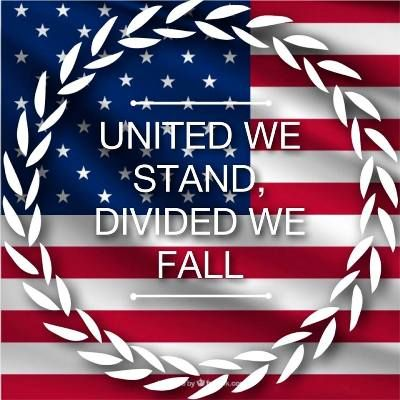 United We Stand; Divided We Fall - Let's Unite Under God! - by Virginia Lieto - Remember that united we stand; divided we fall. How can we unite this so deeply divided country? I have a novel idea. Read to learn more... http://virginialieto.com/united-we-stand-divided-fall/#.WIYJEcszX3g