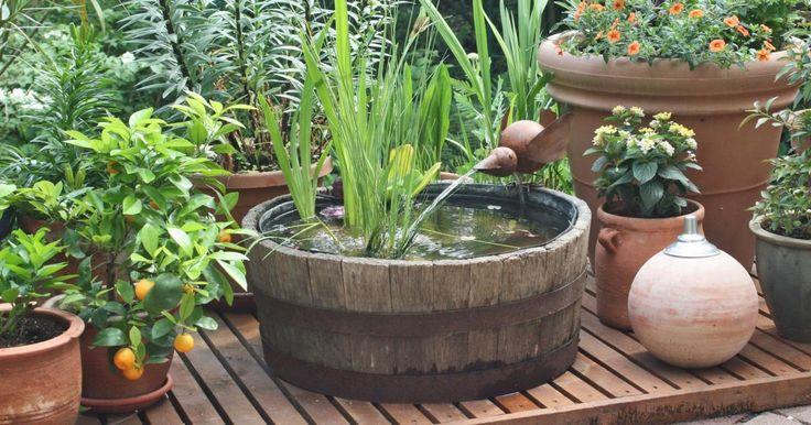 die besten 25 teichanlagen ideen auf pinterest naturteich wasserlauf und schwimmteich. Black Bedroom Furniture Sets. Home Design Ideas